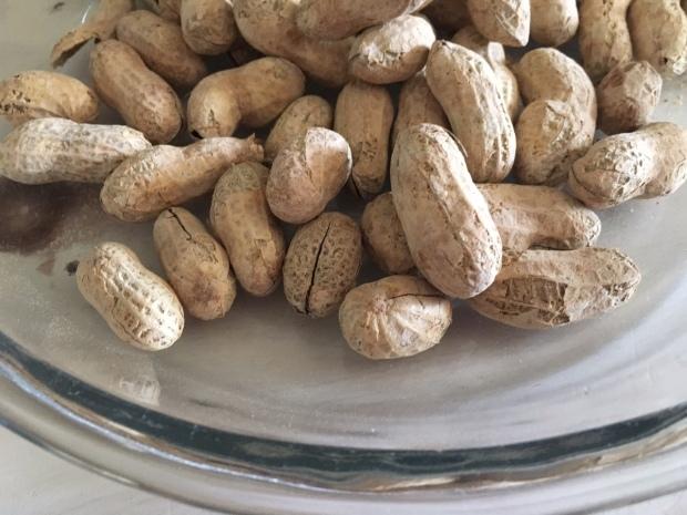 up close peanuts