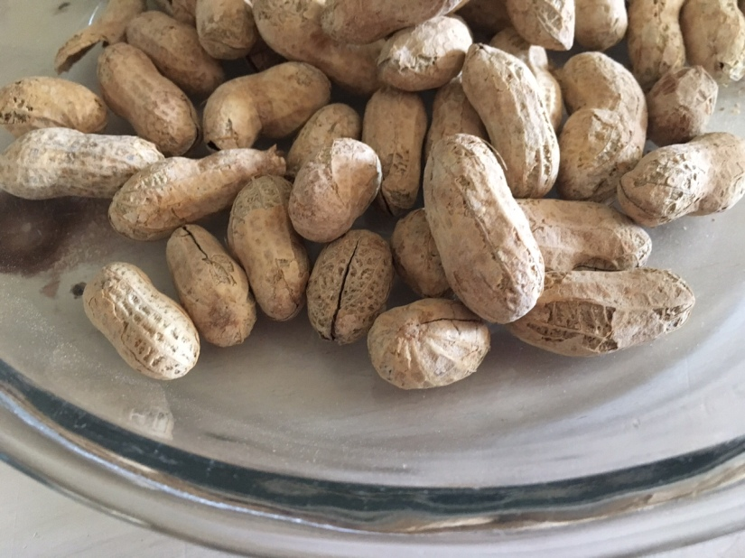 up close peanuts